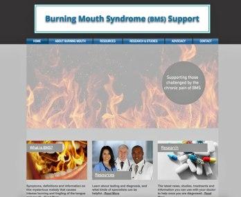 BMS-Support-Website-Home